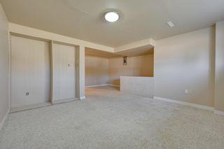 Photo 32: 10223 171A Avenue in Edmonton: Zone 27 House for sale : MLS®# E4255487