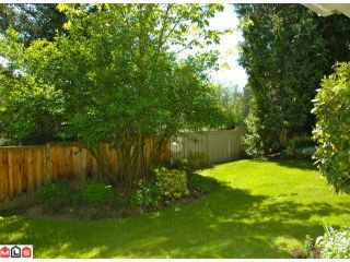 Photo 8: 228 13900 HYLAND Road in Surrey: East Newton Townhouse for sale : MLS®# F1212260