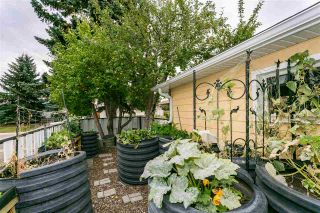 Photo 26: 7208 84 Avenue in Edmonton: Zone 18 House for sale : MLS®# E4231560