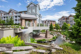 "Photo 19: 210 6430 194 Street in Surrey: Clayton Condo for sale in ""WATERSTONE"" (Cloverdale)  : MLS®# R2371241"