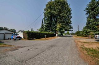 Photo 14: 4689 238 Street in Langley: Salmon River House for sale : MLS®# R2327028
