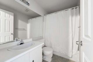 Photo 27: 36 18010 98 Avenue in Edmonton: Zone 20 Townhouse for sale : MLS®# E4255398