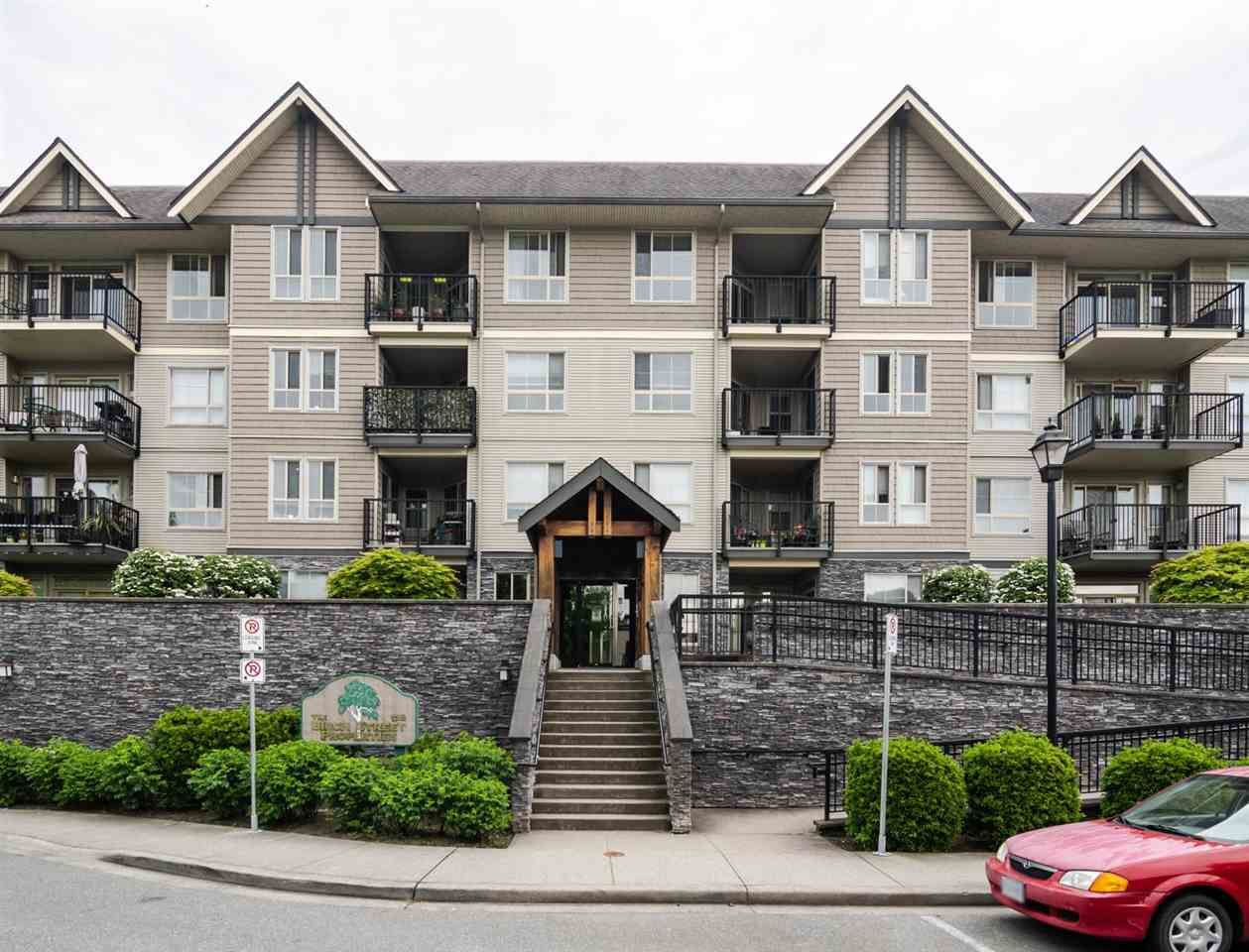 Main Photo: 207 9000 BIRCH Street in Chilliwack: Chilliwack W Young-Well Condo for sale : MLS®# R2578028