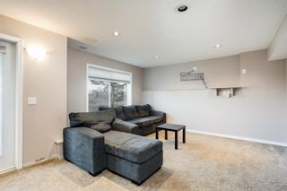 Photo 17: 102 2384 Sagewood Gate SW: Airdrie Semi Detached for sale : MLS®# A1114364