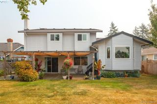 Photo 28: 4164 Beckwith Pl in VICTORIA: SE Lake Hill House for sale (Saanich East)  : MLS®# 797392