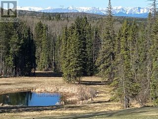 Photo 6: 53118 Range Road 224A in Rural Yellowhead County: House for sale : MLS®# A1100110