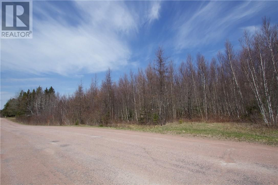 Main Photo: Lot Babcock RD in Sackville: Vacant Land for sale : MLS®# M134581