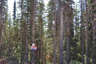 """Photo 8: 210 ALPINE Way in Smithers: Smithers - Rural Land for sale in """"Hudson Bay Mountain Estates"""" (Smithers And Area (Zone 54))  : MLS®# R2453895"""