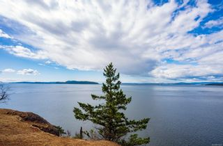 Photo 31: 7936 Swanson View Dr in : GI Pender Island House for sale (Gulf Islands)  : MLS®# 878940