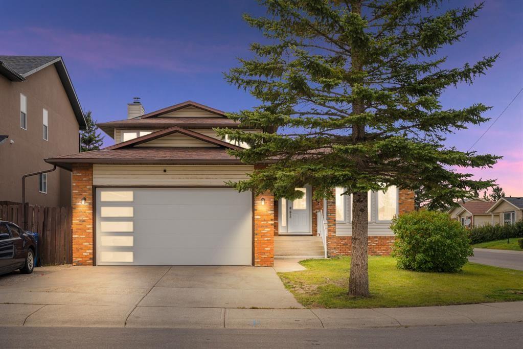 Main Photo: 4 Castlebury Way NE in Calgary: Castleridge Detached for sale : MLS®# A1146595