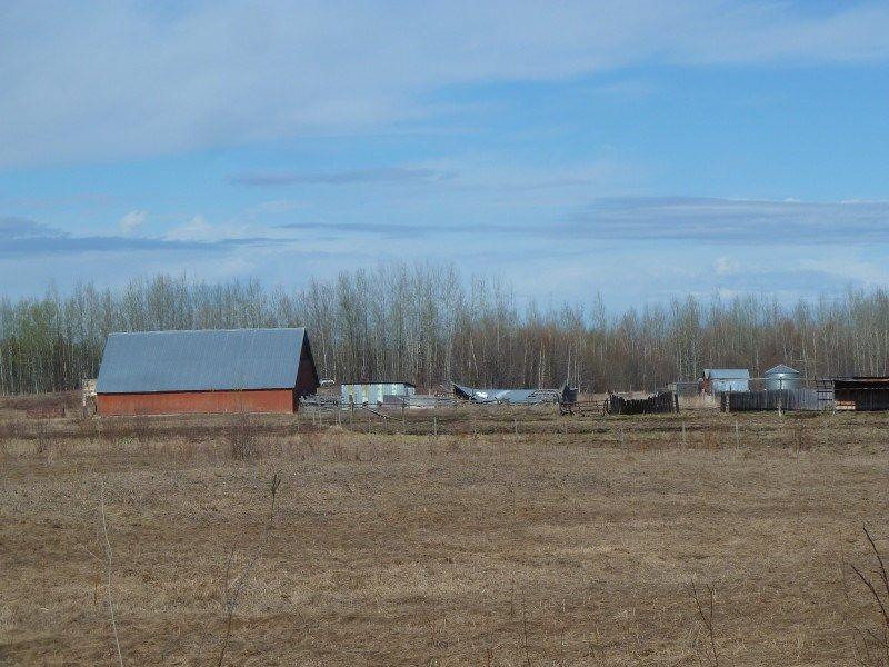 Photo 35: Photos: MILE 283 97 (ALASKA) Highway in Fort Nelson: Fort Nelson - Rural House for sale (Fort Nelson (Zone 64))  : MLS®# R2275782