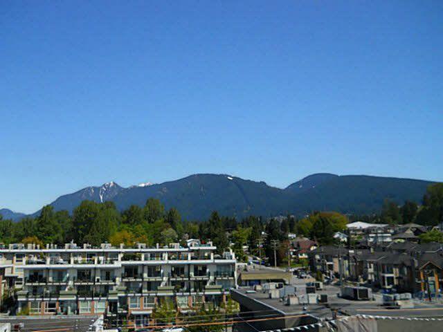 Photo 14: Photos: 302 317 Bewicke Avenue in North Vancouver: Hamilton Condo for sale : MLS®# V1112342