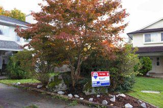 Photo 20: 24820 118B Avenue in Maple Ridge: Websters Corners House for sale : MLS®# R2008324