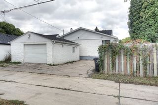Photo 18: 282 Amherst Street in Winnipeg: Deer Lodge Single Family Detached for sale (5E)  : MLS®# 1725025
