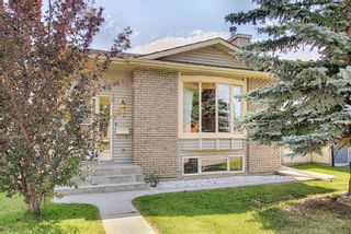 Main Photo: 67 Appletree Crescent SE in Calgary: Applewood Park Detached for sale : MLS®# A1132464