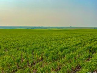 Photo 29: Unvoas Farm in Swift Current: Farm for sale (Swift Current Rm No. 137)  : MLS®# SK864766