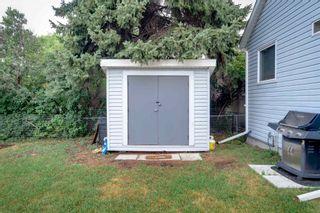 Photo 34: 10982 118 Street in Edmonton: Zone 08 House for sale : MLS®# E4266397