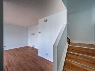 Photo 3: 124 Martinbrook Road NE in Calgary: Martindale Detached for sale : MLS®# A1100901