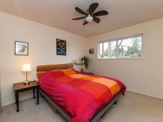 Photo 5: 2800 Windermere Ave in CUMBERLAND: CV Cumberland House for sale (Comox Valley)  : MLS®# 829726