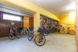 Photo 19: 206 1366 Hillside Ave in VICTORIA: Vi Oaklands Condo for sale (Victoria)  : MLS®# 751862