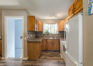 Photo 2: 31 Penworth Place SE in Calgary: Penbrooke Meadows Detached for sale : MLS®# A1120647