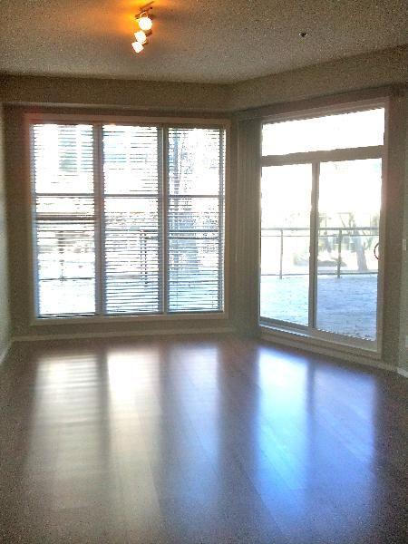 Main Photo: 203, 10147 - 112 Street: Condo for sale (Oliver)  : MLS®# E3256263