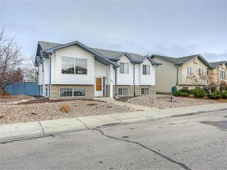 Photo 33: 191 STRATHAVEN Crescent: Strathmore House for sale : MLS®# C4088087