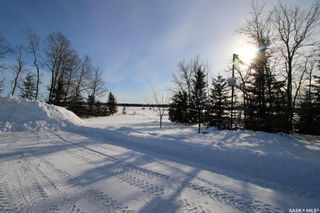 Photo 40: Larson Lake Property in Spiritwood: Residential for sale (Spiritwood Rm No. 496)  : MLS®# SK840876