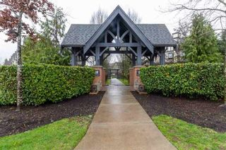 """Photo 23: 8 20875 80 Avenue in Langley: Willoughby Heights Townhouse for sale in """"PEPPERWOOD"""" : MLS®# R2563854"""