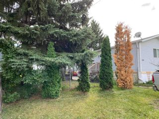 Photo 17: 250 305 Calahoo Road: Spruce Grove Mobile for sale : MLS®# E4262768