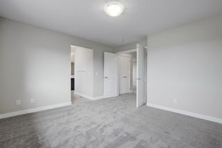 Photo 20: 57 RED SKY Terrace NE in Calgary: Redstone Detached for sale : MLS®# A1060906