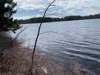 Photo 6: Lot E Hebb Road in Wileville: 405-Lunenburg County Vacant Land for sale (South Shore)  : MLS®# 202106726