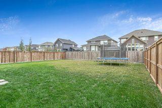 Photo 28: 203 Boulder Creek Bay SE: Langdon Detached for sale : MLS®# A1149788