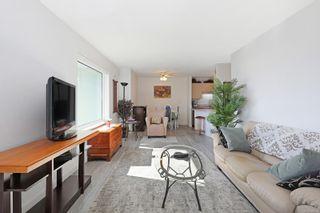 Photo 8: 308 1970 Comox Ave in : CV Comox (Town of) Condo for sale (Comox Valley)  : MLS®# 869359