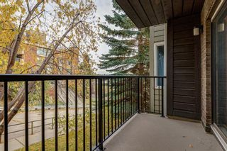 Photo 14: 204 333 2 Avenue NE in Calgary: Crescent Heights Apartment for sale : MLS®# A1039174