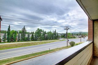 Photo 19: 212 8604 48 Avenue NW in Calgary: Bowness Apartment for sale : MLS®# A1138571