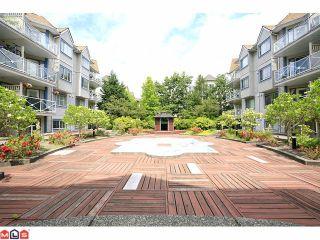"""Photo 10: 309 12101 80TH Avenue in Surrey: Queen Mary Park Surrey Condo for sale in """"Surrey Town Manor"""" : MLS®# F1118358"""