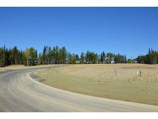 """Photo 15: LOT 19 BELL Place in Mackenzie: Mackenzie -Town Land for sale in """"BELL PLACE"""" (Mackenzie (Zone 69))  : MLS®# N227312"""