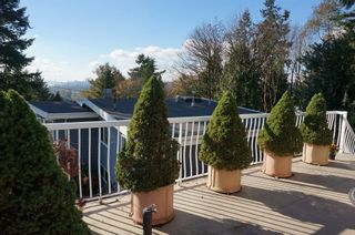"""Photo 30: 350 SEAFORTH Crescent in Coquitlam: Central Coquitlam House for sale in """"Austin Heights"""" : MLS®# R2011370"""
