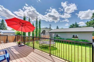 Photo 44: 1315 20 Street NW in Calgary: Hounsfield Heights/Briar Hill Detached for sale : MLS®# A1056774