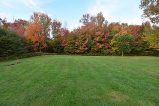 Photo 14: 82 MORGANVILLE Road in Bear River: 401-Digby County Residential for sale (Annapolis Valley)  : MLS®# 202125854