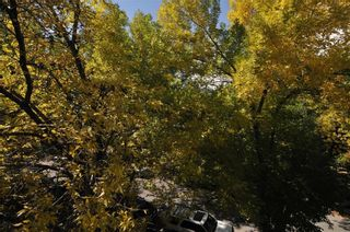 Photo 17: 403 828 4A Street NE in Calgary: Renfrew Apartment for sale : MLS®# C4205674