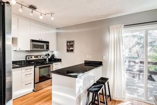 Photo 19: 508 Mckinnon Drive NE in Calgary: Mayland Heights Detached for sale : MLS®# A1154496
