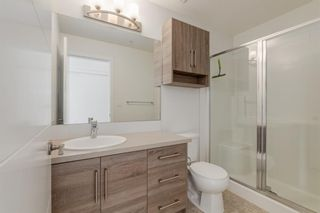Photo 16: 501 122 Mahogany Centre SE in Calgary: Mahogany Apartment for sale : MLS®# A1078227