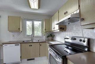 Photo 7: 48 DOVERTHORN Place SE in Calgary: Dover Detached for sale : MLS®# A1023255