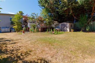 Photo 19: 4211 Belvedere Rd in VICTORIA: SE Lake Hill House for sale (Saanich East)  : MLS®# 769195