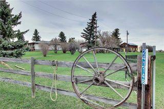 Photo 1: 241148 Range Road 281: Chestermere Detached for sale : MLS®# C4295767