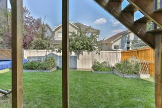Photo 42: 119 CRESTMONT Drive SW in Calgary: Crestmont Detached for sale : MLS®# C4205113