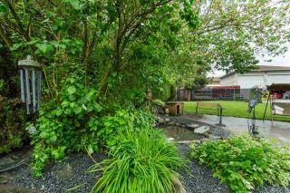Photo 29: 10067 NELSON Road in Rosedale: Rosedale Center House for sale : MLS®# R2461302
