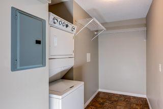 Photo 18: 6109 7331 South Terwilleger Drive in Edmonton: Zone 14 Condo for sale : MLS®# E4256187
